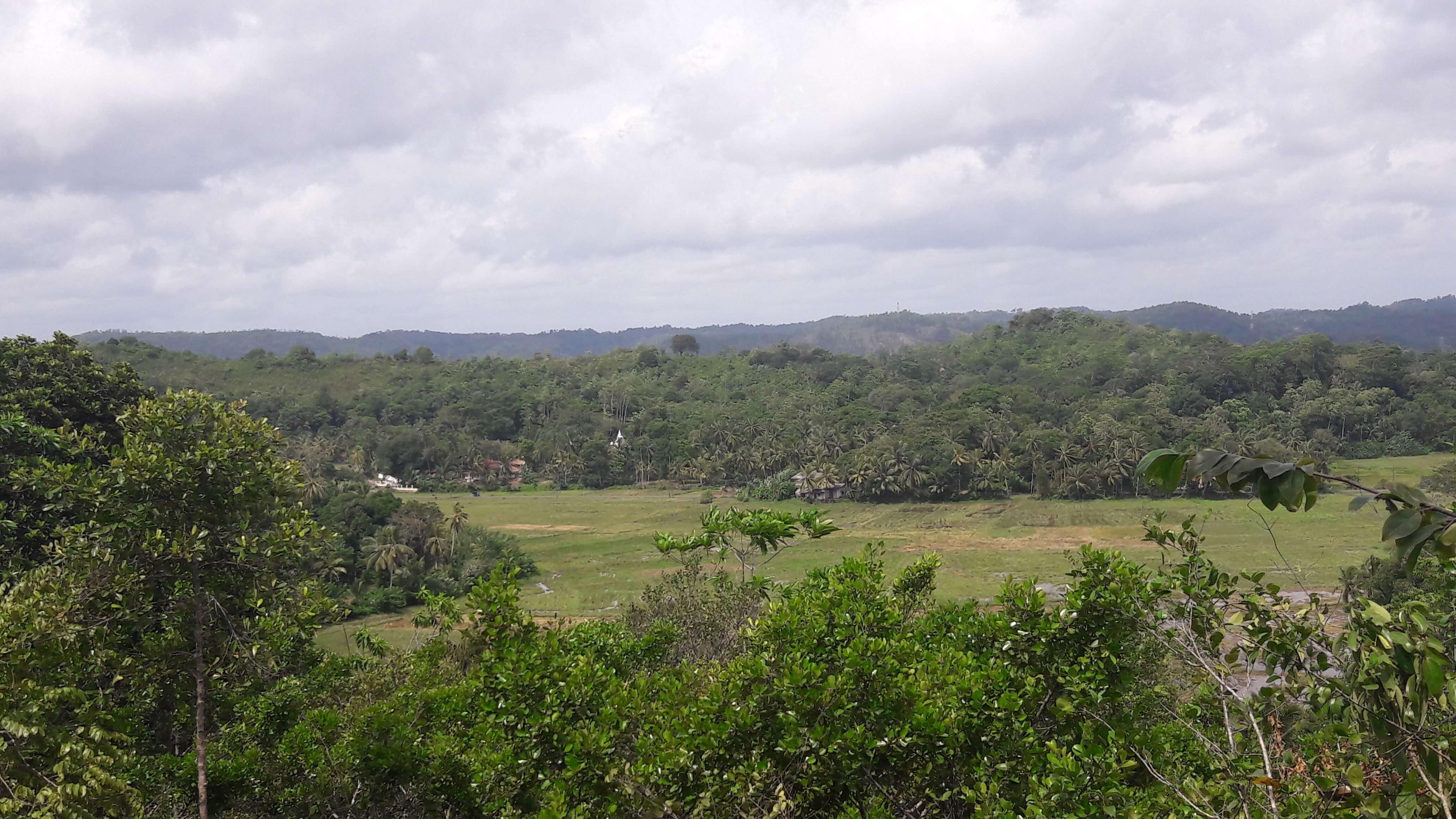 Paddy View Hilltop In Habaraduwa Lanka Real Estate