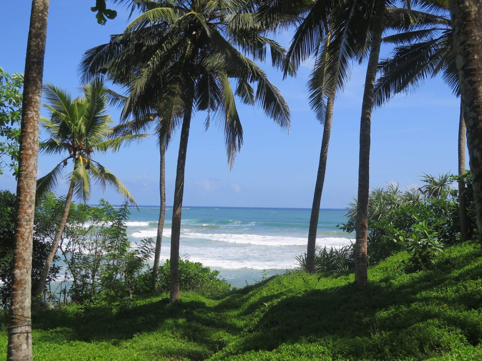 Ocean View Hilltop Plot Near Matara